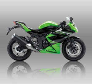 250 rrmono-green