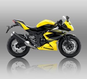rrmono-yellow