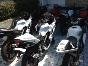 ninja 150 rr white