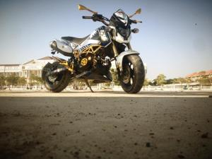 Honda Grom modification (18)
