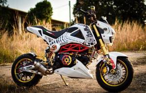 Honda Grom modification (22)