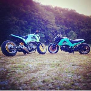 Honda Grom modification (25)