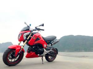 Honda Grom modification (35)