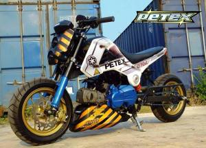 Honda MSX 125 Grom modif (10)