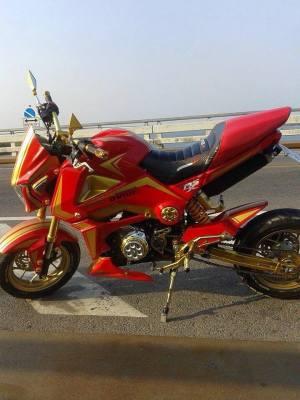 Honda MSX 125 Grom modif (32)