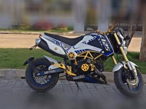 Honda MSX 125 Grom modification (12)