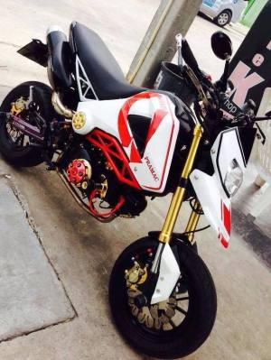 Honda MSX 125 Grom modification (14)