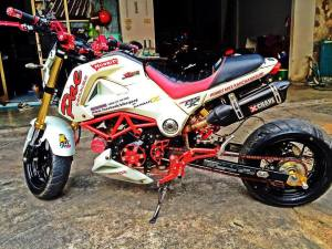 Honda MSX 125 Grom modification (16)