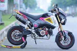 Honda MSX 125 Grom modification (28)