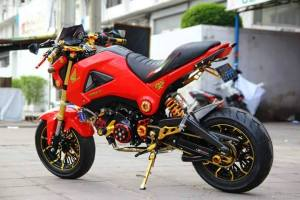 Honda MSX 125 Grom modification (38)