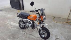 windshild motor klasik (15)