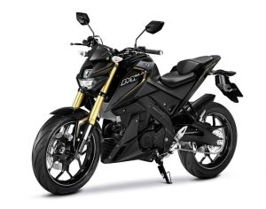 2016 new yamaha mt-15 (16)