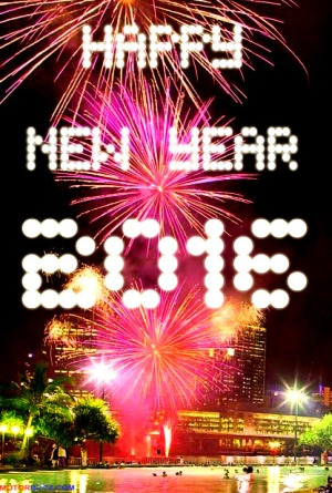 Fireworks new year 2016