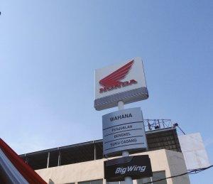 big-wing